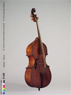 Contrebasse de viole |  Pellegrino di Zanetto